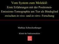 Vom System zum Molekül: - IFZN