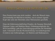 Techno-Genealogie der Hirnbilder (Bauer) (1158 KB) - IFZN