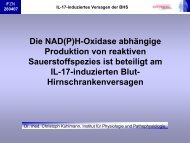 Die NAD(P)H-Oxidase abhängige Produktion von reaktiven ... - IFZN