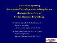 Vortrag beim Frühjahrsmeeting 2007 (616 KB) - IFZN - Johannes ...