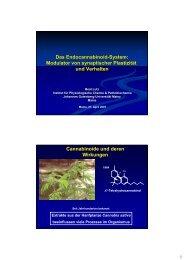 Das Endocannabinoid-System - IFZN - Johannes Gutenberg ...
