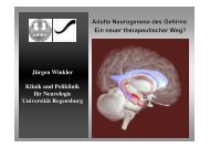 Adulte Neurogenese des Gehirns - IFZN