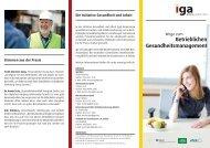 Flyer - Initiative Gesundheit & Arbeit