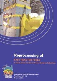 Reprocessing of FAST REACTOR FUELS at IGCAR