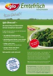 Infoblatt Broccoli - bei Iglo Gastronomie!