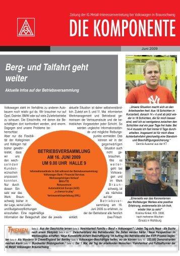 Ausgabe 2 / 2009 - IG Metall Braunschweig