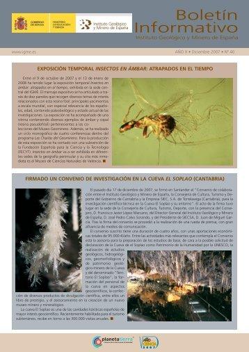 diciembre 2007 - Instituto Geológico y Minero de España