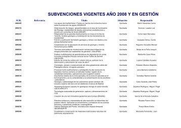 SUBVENCIONES VIGENTES AÑO 2008 Y EN GESTIÓN - Instituto ...