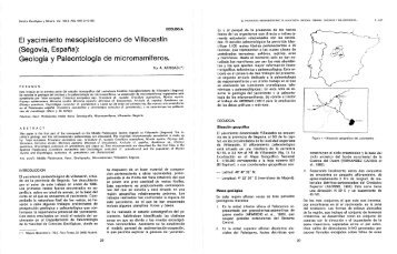 El yacimiento mesopleistoceno de Villacastín - Instituto Geológico y ...