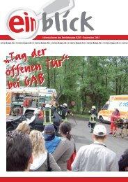 2007-10 Einblick - IG Metall Salzgitter-Peine