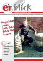2005-04 Einblick - IG Metall Salzgitter-Peine