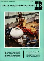 Magazin 196503
