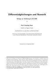 Skript zur Vorlesung - Institut für Geometrie und Praktische Mathematik