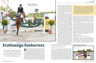 Erstklassige Konkurrenz - Mecklenburger Pferde