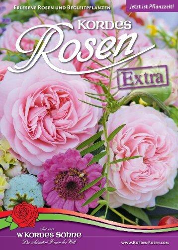 Erlesene Rosen und Begleitpflanzen Jetzt ist ... - Kordes Rosen