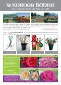 Erlesene Rosen und Begleitpflanzen Jetzt ist ... - Kordes Rosen - Seite 2