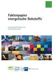 energetische Rohstoffe - Deutscher Industrie- und Handelskammertag