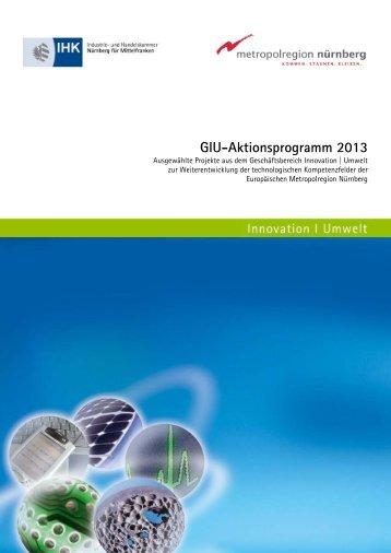 GIU-Aktionsprogramm 2013 - IHK Nürnberg für Mittelfranken