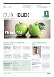 Download - IPM Schober Fenster