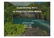 Understanding Stat-C by Using Cell Culture Models - IHL Press