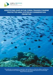 21_Identifying Gaps in the Coral Triangle Marine Protected Area System as Conservation Priorities