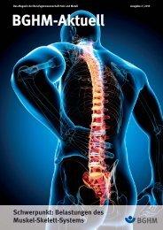 Belastungen des Muskel-Skelett-Systems. BGHM-aktuell 2/2013, S ...