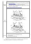 Θέμα: «Karneval – Fasching im DaF Unterricht» Liebe DaF ... - Page 4