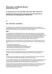 Besonderer schriftlicher Bericht I. Zur Arbeit des Ausschusses
