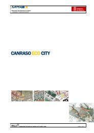 Canraso Development (pdf 7,4 Mb) - Iiinstitute.nl