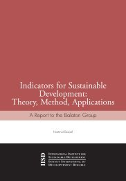 Indicators for Sustainable Development: Theory, Method, Applications