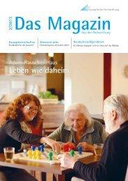 Das Magazin 2/2013 - Evangelische Heimstiftung