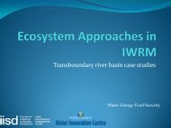 Ecosystem Approaches in IWRM - International Institute for ...
