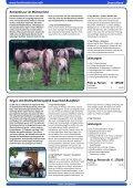 RUHRindustrie! - kontinent-reisen.de - Seite 5