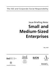 Small and Medium-Sized Enterprises - International Institute for ...