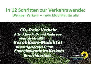 In 12 Schritten zur Verkehrswende: - Toni Hofreiter