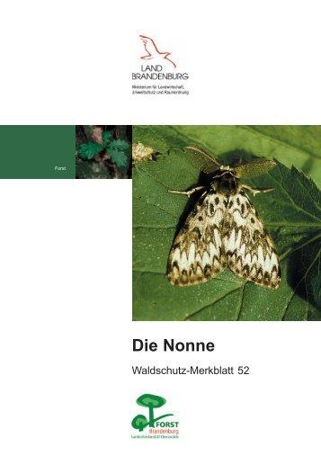 Die Nonne / Waldschutz-Merkblatt 52 - Landesbetrieb Forst ...