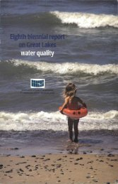 Eighth Great Lakes Water Quality Biennial Report - International ...