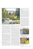 Nr. 09/2013 - Angermünde - Page 3