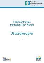 Strategiepapier - Regionalstrategie Demografischer Wandel - ddn ...