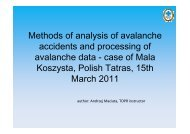 Methods of analysis of avalanche accidents and ... - IKAR-CISA