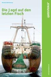 Die Jagd auf den letzten Fisch - Kurzinfo Überfischung - Greenpeace