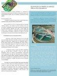 Revista Fornecedores Governamentais 9 - Page 5