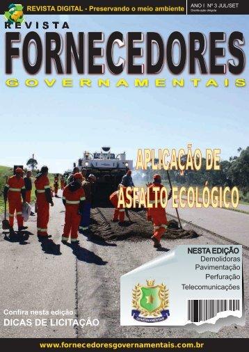 Revista Fornecedores Governamentais 3