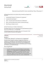Merkblatt Baustein 1 (PDF 89 kB) - ILB