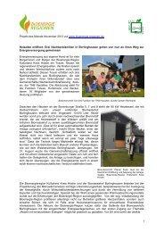 pdf Datei - Bioenergie-Regionen