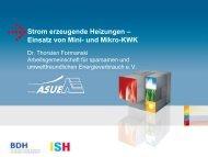 Strom erzeugende Heizungen – Einsatz von Mini- und Mikro ... - BDH