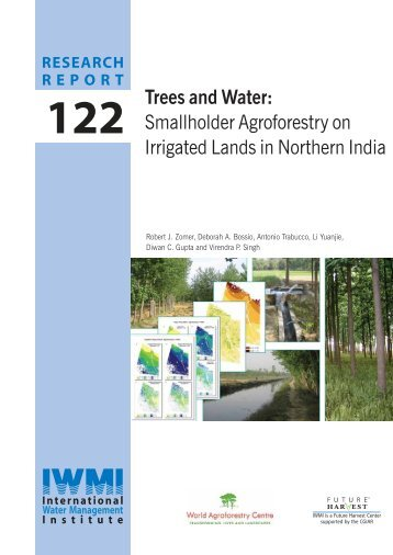 Smallholder Agroforestry on Irrigated Lands in Northern India