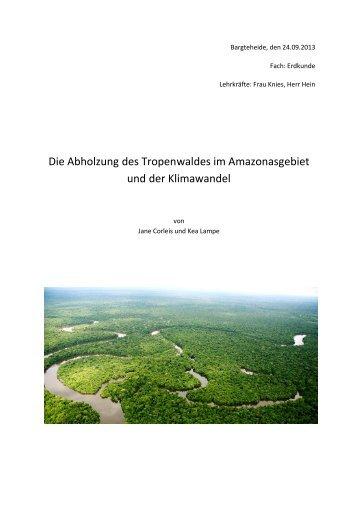 Die Abholzung des Tropenwaldes im Amazonasgebiet und der ...