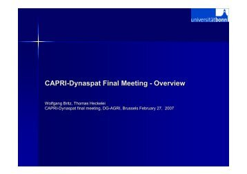 CAPRI-Dynaspat Final Meeting - Overview