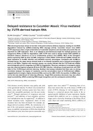 Delayed resistance to Cucumber Mosaic Virus mediated by 3′UTR ...
